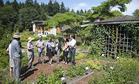 Guests exploring the garden